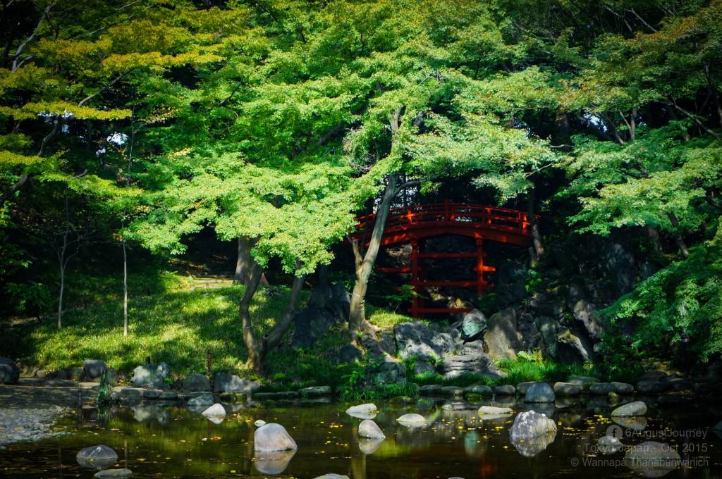 Koishikawa Korakuen (สวนโคอิชิกาว่า-โคระคุเอ็น)