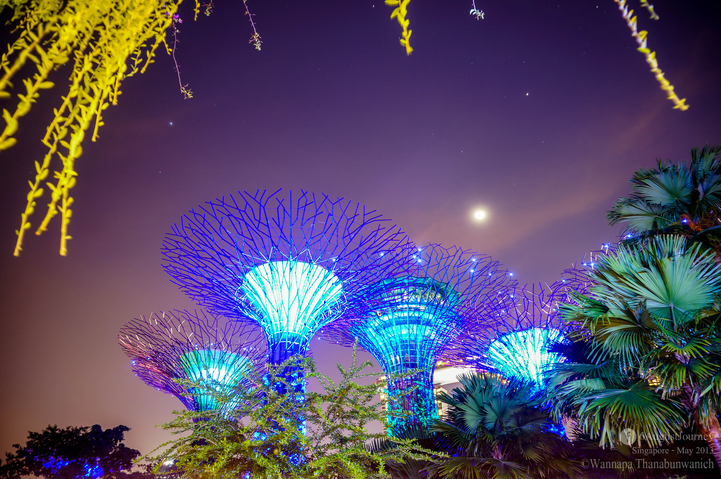 ช่วงเวลา 1 ทุ่มจะมีการแสดงแสงสีเสียงที่สวนแห่งนี้ค่ะ ดันตรงเวลาเดียวกับแสงเลเซอร์ที่ตึกมาริน่า เบย์ พอดีอีก เลือกได้ค่ะจะดูอะไร ตอนไหน กะเวลาดีๆ