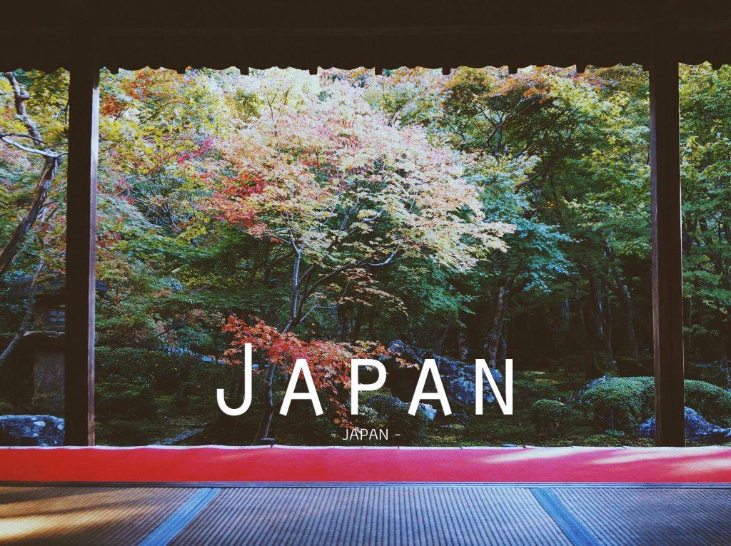 เที่ยวญี่ปุ่น 9 วัน [ฉบับเมืองหลัก โตเกียว ฟูจิ เกียวโต โอซาก้า]