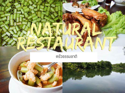Food Corner: ครัวธรรมชาติ (กาญจนบุรี)