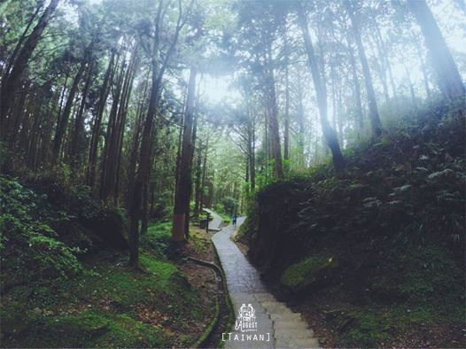 Alishan recreation area