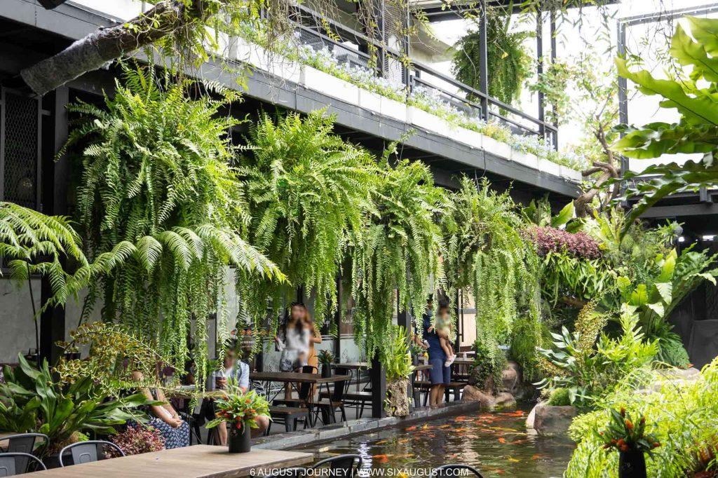 Rain forest Cafe รีวิว บรรยากาศเขียวๆ